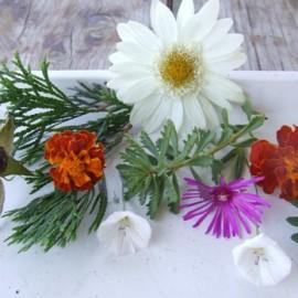 Játék a virágokkal