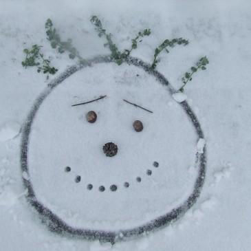 Rajzok a hóban