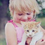 Cicás, kutyás játékok mozgással