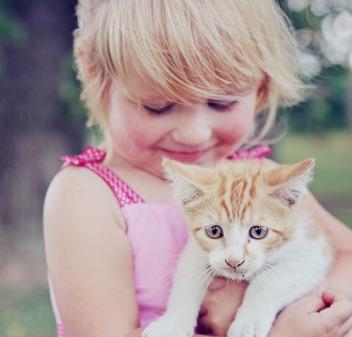 cica-kicsi