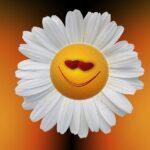 Játéktervező augusztus 7-11-ig – nyári ötletek ovisoknak