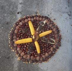 Őszi mandalák