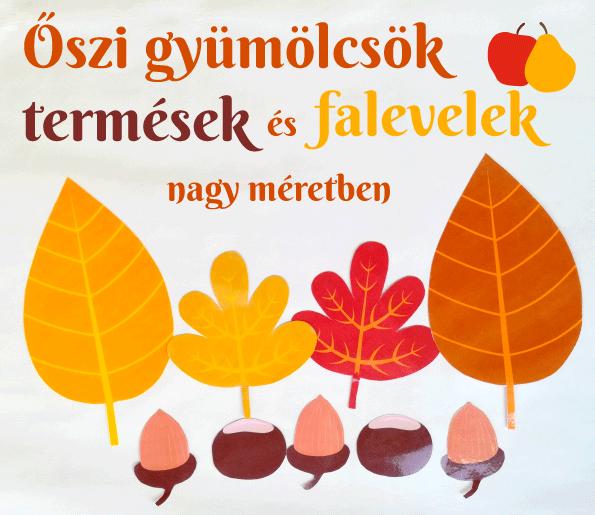 Nagyméretű őszi gyümölcsök, termések, falevelek válogatáshoz, számolgatáshoz, sorozatalkotáshoz