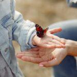 Pillangós versek, mondókák